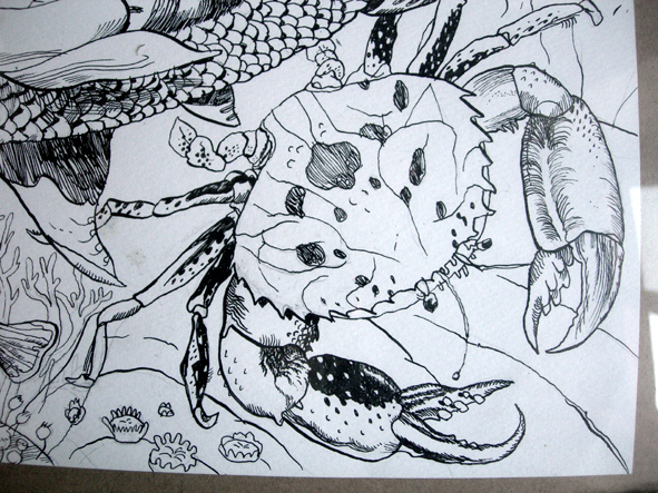 pesce-copia