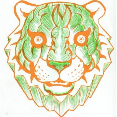 tigre_mangor_sito